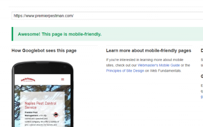 SEO & A Mobile Friendly Website