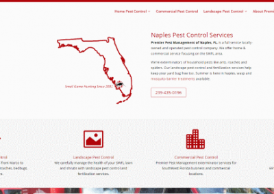 Web Design for Naples Company