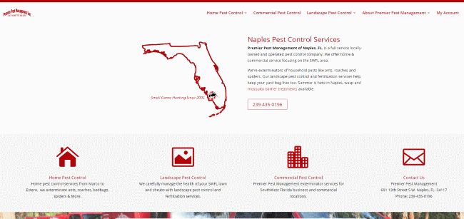 florida web design: