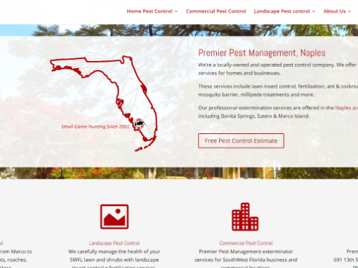 Naples Website Design