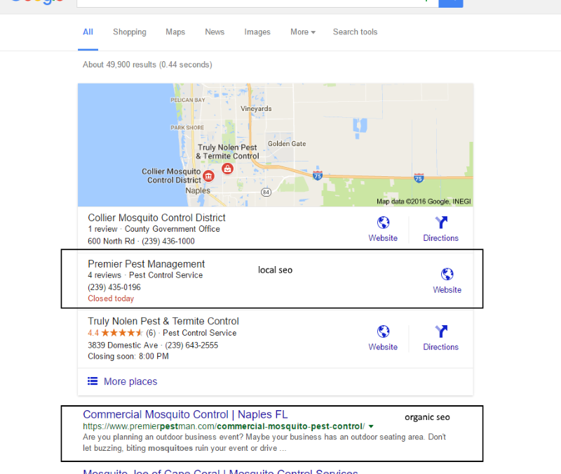 Naples Florida Local SEO Results