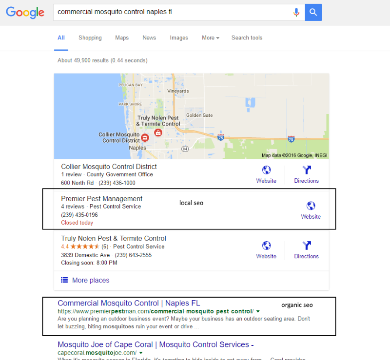 naples seo local organic services