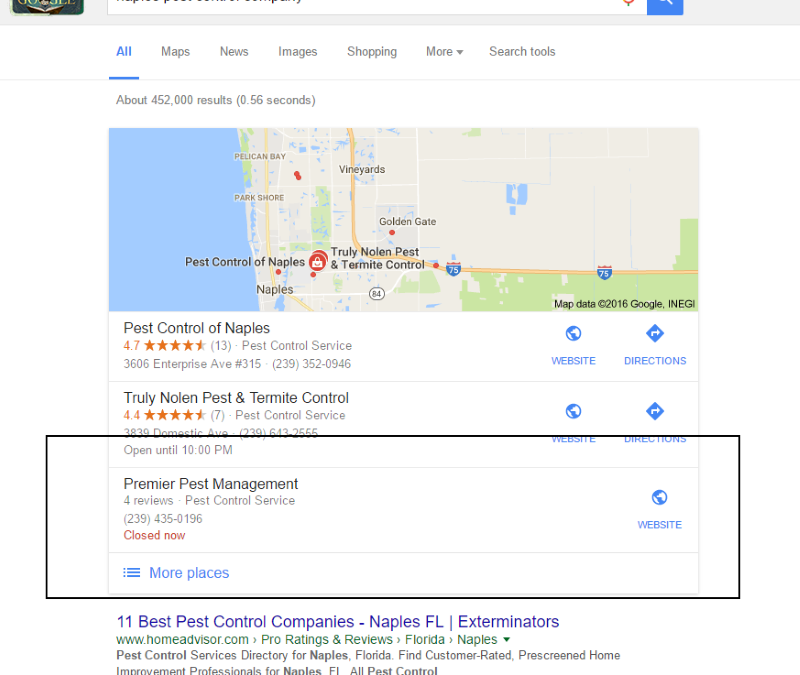 Naples Florida Local SEO Pin Result