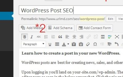 WordPress Post SEO